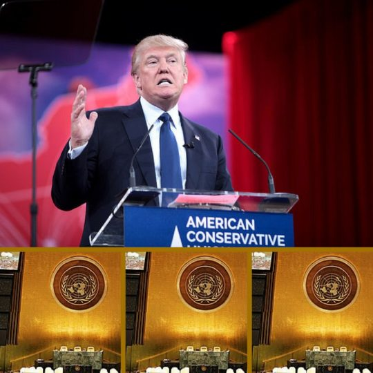 Colored photograph of President Donald Trump giving a speech with right hand raised. Below are 3 identical pictures of the United Nations General Assembly lectern. This is gold in color with the United Nations symbol on it.